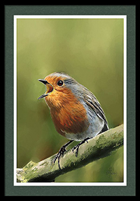 robin redbreast, oil painting painting, portraits pets, wildlife portraits